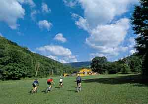 New River: West Virginia Whitewater Rafting